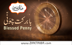 Blessed Penny of Ala Hazrat Imam Ahmed Raza Khan